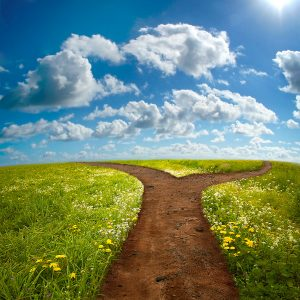 Entrepreneurship after 50: which path to choose?