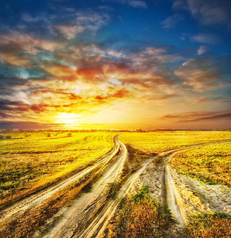 succession planning transition planning two different roads